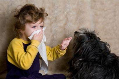 Алергени у дітей