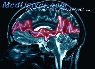 Автономна нервова система. Симпатична нервова система