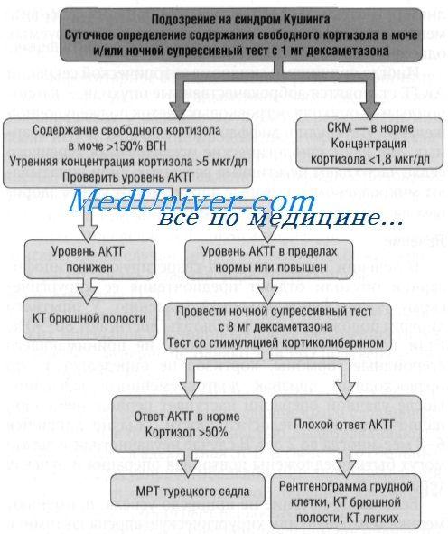 Хвороба кушинга: клініка, діагностика і лікування
