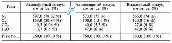 Склад альвеолярного повітря. Газовий склад альвеолярного повітря.