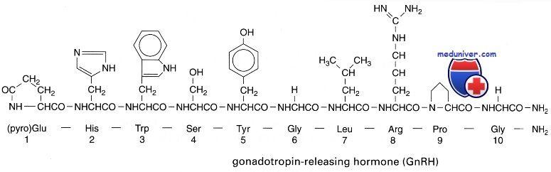 гонадотропін-рилізинг гормон
