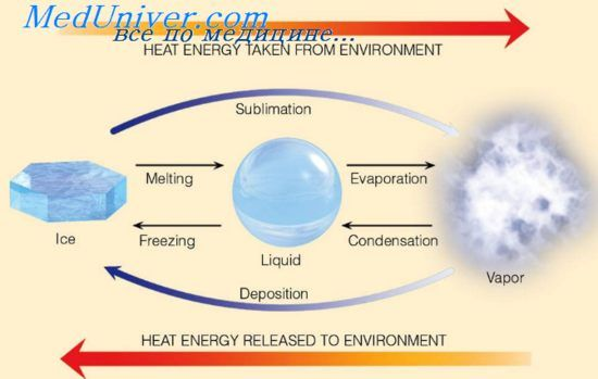 Випаровування як фактор тепловіддачі. Одяг та випаровування з поверхні тіла