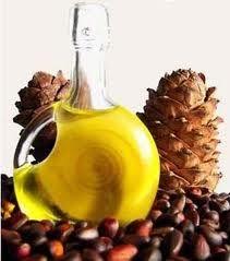 Кедрова олія при панкреатиті