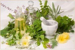 Лікарські рослини (трави) для дітей