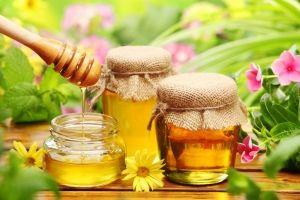 Мед: корисні властивості, шкода, як перевірити натуральний мед, види меду