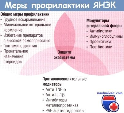 Сучасні напрямки профілактики виразкового некротизирующего ентероколіту (янек)