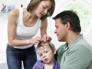 Педикульоз у дітей, лікування, причини, симптоми