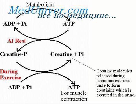 пункція артерії