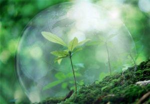 Повітряне середовище причина хвороб органів дихання