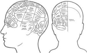 Вищі психічні функції